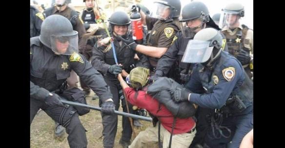 dapl-arrests